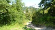 Il territorio di Monte Ruperto (foto Daniele Dei)